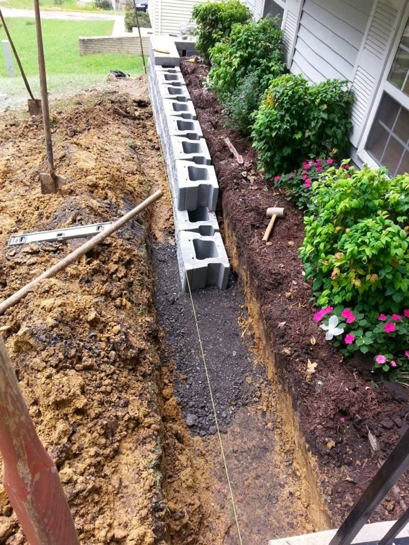 Local Tree Stump Removal Service St Mary's County