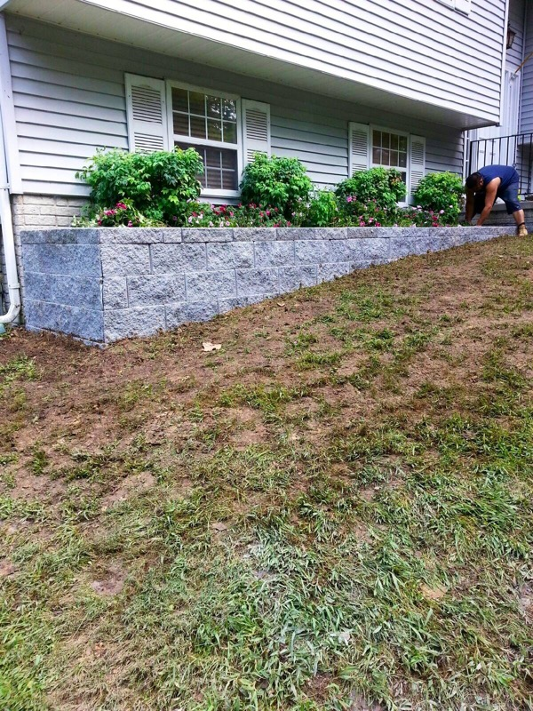 Local Tree Stump Removal Service Charles County