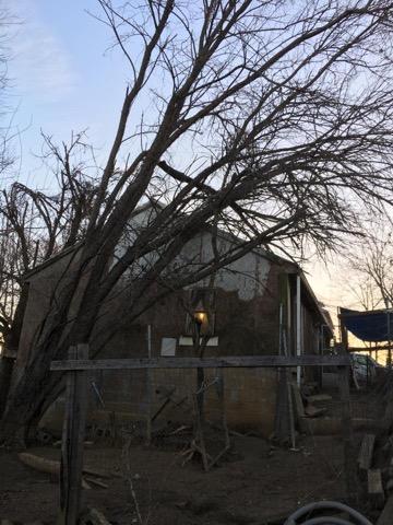 Tree Fallen On Fence In St. Leonard