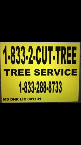 Tree Service Company Southern Tree Services Southern Md 49