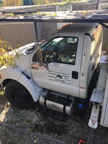 Tree Removal Company Huntingtown Md