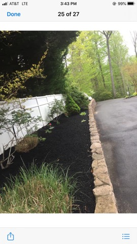 Stump Grinding Services Southern Md