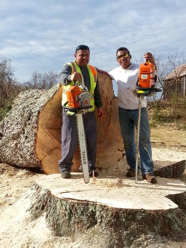 Kellys Tree Removal Service Maryland