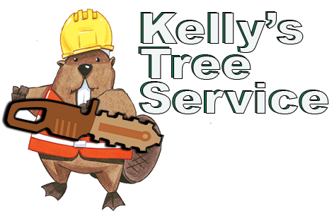tree removal company Southern MD