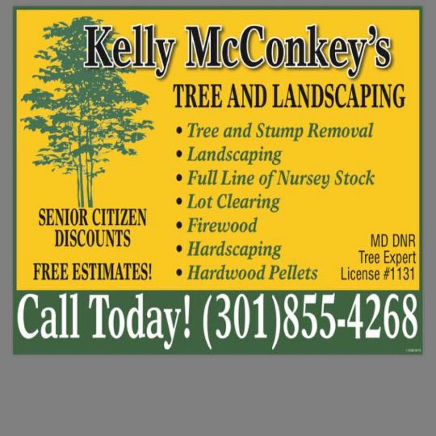 Tree Service Company Services In My Area